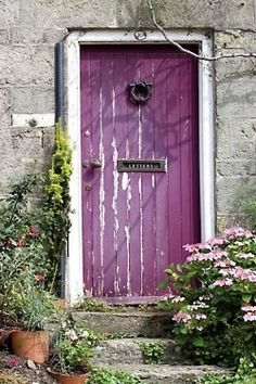 Purple is a pretty popular color for front doors. It's symbolizes energy and is thought to invite many opportunities into your home.