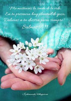 Salmos 16:11 Me mostrarás la senda de la vida; En tu presencia hay plenitud de gozo; Delicias a tu diestra para siempre.♔