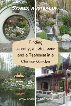 Stroll around the Chinese Garden of Friendship located at Darling Harbour, Sydney #DarlingHarbour #Sydney #Australia #gardens #chinesegarden #gardengift #gardendesign #gardenlandscaping Sydney Australia, Australia Travel, Landscape Design, Garden Design, Lotus Pond, Darling Harbour, Chinese Garden, Garden Gifts, Great View