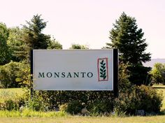 #Large US farm study finds no cancer link to Monsanto weedkiller - Reuters: Reuters Large US farm study finds no cancer link to Monsanto…