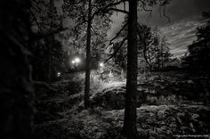 NIGHT ORIENTEERING JUKOLA STYLE — Vesa Loikas Photography Photo Essay, Finland, Fine Art, Sunset, Sport, Black And White, Night, Prints, Photography
