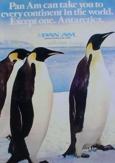 Pan Am Promotional Pins Travel Ads, Air Travel, Vintage Travel Posters, Vintage Airline, National Airlines, Pan Am, Pub, Love Posters, Vintage Soul