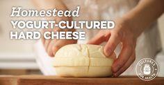 Homestead Yogurt-Cultured Hard Cheese