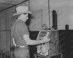 Cowboy playing a Mills War Eagle Slot Machine 1930's 8x10 $19.99 Free Shipping