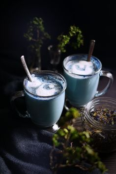 The Darkness is a Blanket: Cascadia Fog Comfort Tea with Hawthorn — The Wondersmith Tea Recipes, Cooking Recipes, Vanilla Bean Powder, Butterfly Pea Flower, French Press Coffee Maker, Magic Recipe, Earl Grey Tea, Le Diner, Kitchen Witch