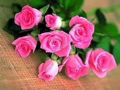 pink words of love - Yahoo Image Search Results