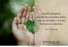 Každá dušeplná myšlienka pomáha srdcu, aby sa vznášalo s novou kvitnúcou radosťou. -- Sri Chinmoy