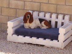Camas para Perros con Palets Reciclados