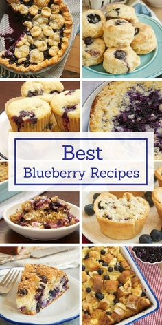 Indulge all your blueberry cravings with the best and most popular blueberry recipes from Bake or Break! Blueberry Recipes No Bake, Best Blueberry Recipe, Blueberry Oat, Fruit Recipes, Baking Recipes, Dessert Recipes, Blueberry Sauce, Köstliche Desserts, Delicious Desserts