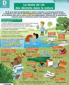 Los desperdicios en la naturaleza