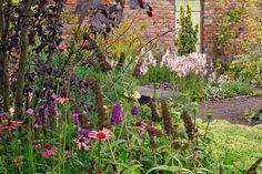 Garden design: cottage garden plants / RHS Gardening