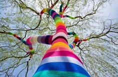 So, we have about 2000 trees on our property ... but I'm thinking this could be a fun project ??  Wow!  Albero a maglia multicolor
