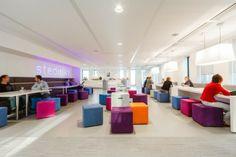 Stedin's New Rotterdam Offices