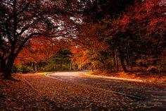 Autumn landscape by Ham - Chobio on 500px