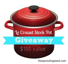 GIVEAWAY: Le Creuset Stock Pot: $100 value - The Sprouting Seed