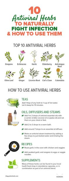Natural Holistic Remedies 10 Antiviral Herbs to Naturally Fight Infection Disney Cocktails, Home Remedies, Natural Remedies, Flu Remedies, Holistic Remedies, Health Remedies, Ginger Benefits, Health Benefits, Natural Antibiotics