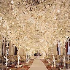 Winter Wonderland Wedding!