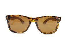 Tortoise Shell Wooden Wayfarer Sunglasses