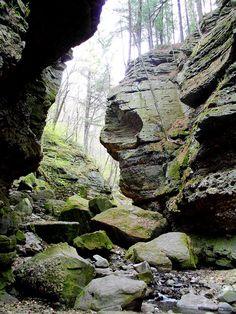 Parfrey's Glen near Devils Lake Wisconsin, I learned how to rock climb here in high school.  it was great fun.