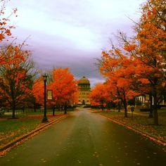 Union College (grandson's college)