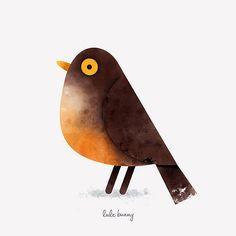 Ornithology on Behance