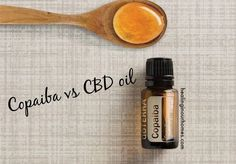 DoTERRA recently released Copaiba oil and we are excited to have it in our arsenal! What is the buzz about CBD vs Copaiba oil? Find out . Copaiba Essential Oil, Essential Oil Uses, Oil Safe, Doterra Oils, Arsenal, Essentials, Cardiovascular Health, Pain Relief, Healing Oils