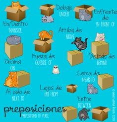 Prepositions of place are pretty useful. From describing where you live, where… Spanish Grammar, Spanish Vocabulary, Spanish Language Learning, Spanish Teacher, Teaching Spanish, Preposition Activities, Spanish Classroom Activities, Class Activities, Preschool Education