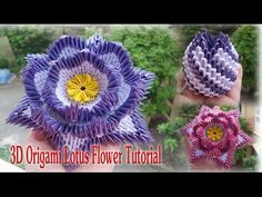 How To Make 3D Origami Lotus Flower | Cómo hacer la flor de Lotus de Origami 3D - YouTube