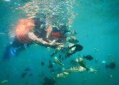 Snorkling at Gili Nanggu