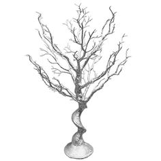 67 best 35th birthday party images birthday ideas ideas party Birthday Party House silver manzanita wishing tree centerpiece gone