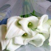 calla crystal blush - 60cm White Wedding Flowers, White Flowers, Zantedeschia, Table Flowers, Colorful Flowers, Flower Decorations, Blush, Blue And White, Crystals