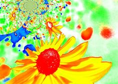 my fotopainting sunflower