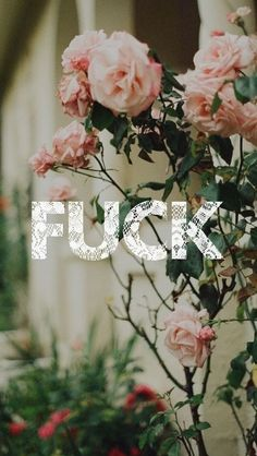 022b56694a54ebc9807878fdea583e8a 24 Phone Wallpapers For Girls Who F*cking Love To Curse