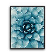 Succulent cactus, Wall art print, Modern home decor, Succulent cacti, Cactus photograph, Green succulent, Floral succulent, Minimalis decor