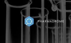 Logo design and Branding by Ottawa Graphic Designer idApostle for Pharmaceutical Recruitment Company Pharmadrome
