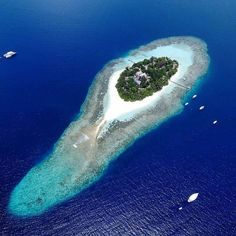 See Instagram photos and videos from Maldives (@omaldives)