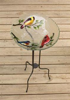Song Birds Bird Bath Glass