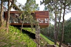 Beautifully integrated Forest House in Jalisco, Mexico by Espacio EMA