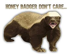 "I would love for this meme to come back in! I love screaming ""HONEY BADGER DON'T CARE!!"" But no one understands :("