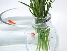 """Salviati """"O"""" aquarium by 5.5 Designers"""