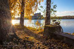 Popular on 500px : Cycling in Finland in autumn Hämeenlinna by alexanderpopkov2