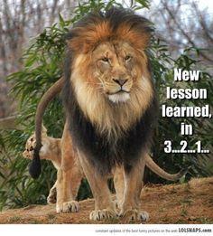 A New Lesson...