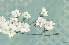 Dogwood Blossoms - Tapetit / tapetti - Photowall