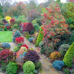 Pathway through the autumn colours (November 6) | Flickr – Condivisione di foto!