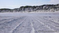 Biały piasek na plaży w Esperance Bay. White sand on the beach in Esperance Bay.
