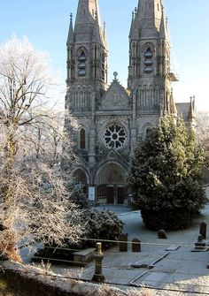 St. Finbarre's cathedral in winter, Cork, Ireland (by click_click)