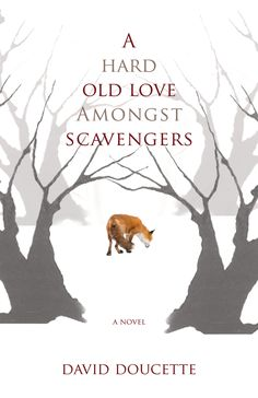 Ex-circumnavigator Miles MacPherson is weary of the world after his travels, but when he embarks on a friendship with a red fox in his backyard, the ensuing adventures shake loose his apathy and transform him in this quirky novel set on Cape Breton Island.  #newbook #book #fallreads #canlit #fox #novascotia #maritimes #canada #capebreton #capebretonisland #novel