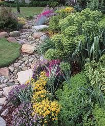 I've always wanted a dry stream bed in my garden.  I love the look and it's great for runoff water.  Maybe someday.
