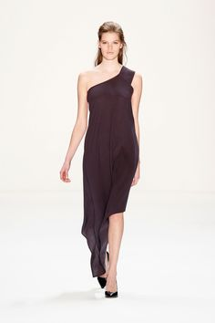 Fall 2013 Ready-to-Wear Perret Schaad