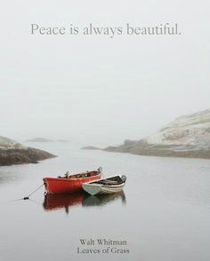 """Peace is always beautiful.""  ― Walt Whitman, Leaves of Grass"